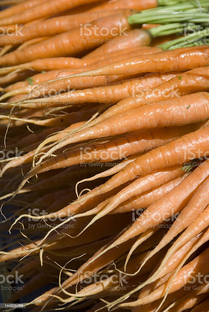 Zanahorias fresca foto de stock libre de derechos