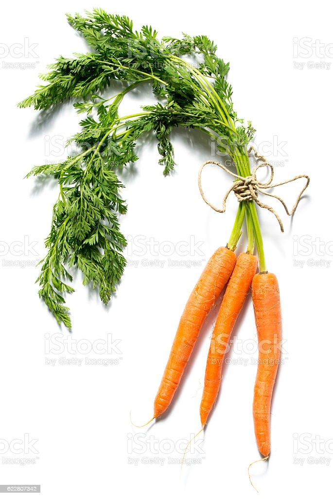 Fresh carrots with leaves isolated on white background stock photo