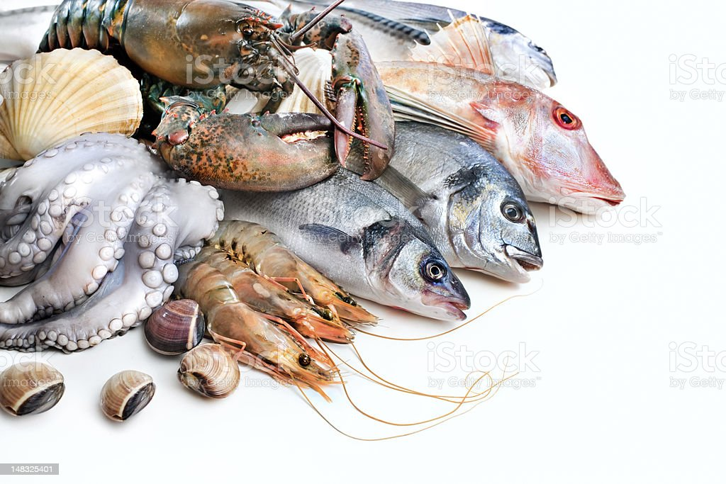 Fresh catch stock photo