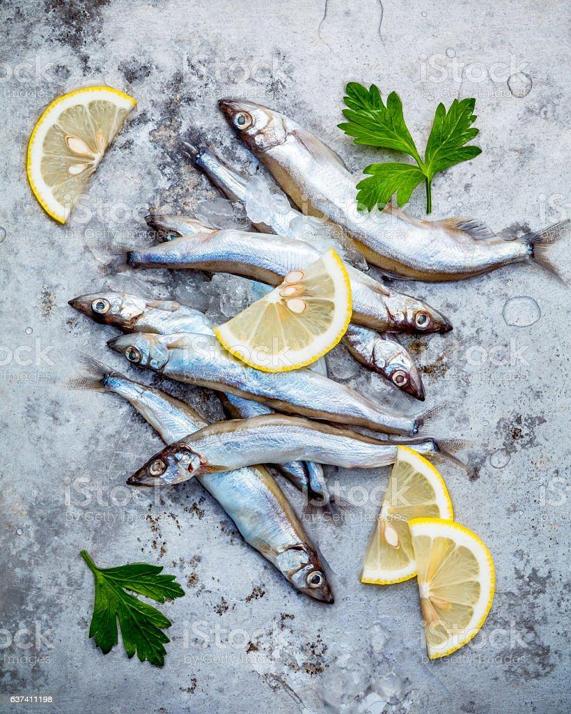 Fresh catch Shishamo fish fully eggs flat lay on shabby stock photo