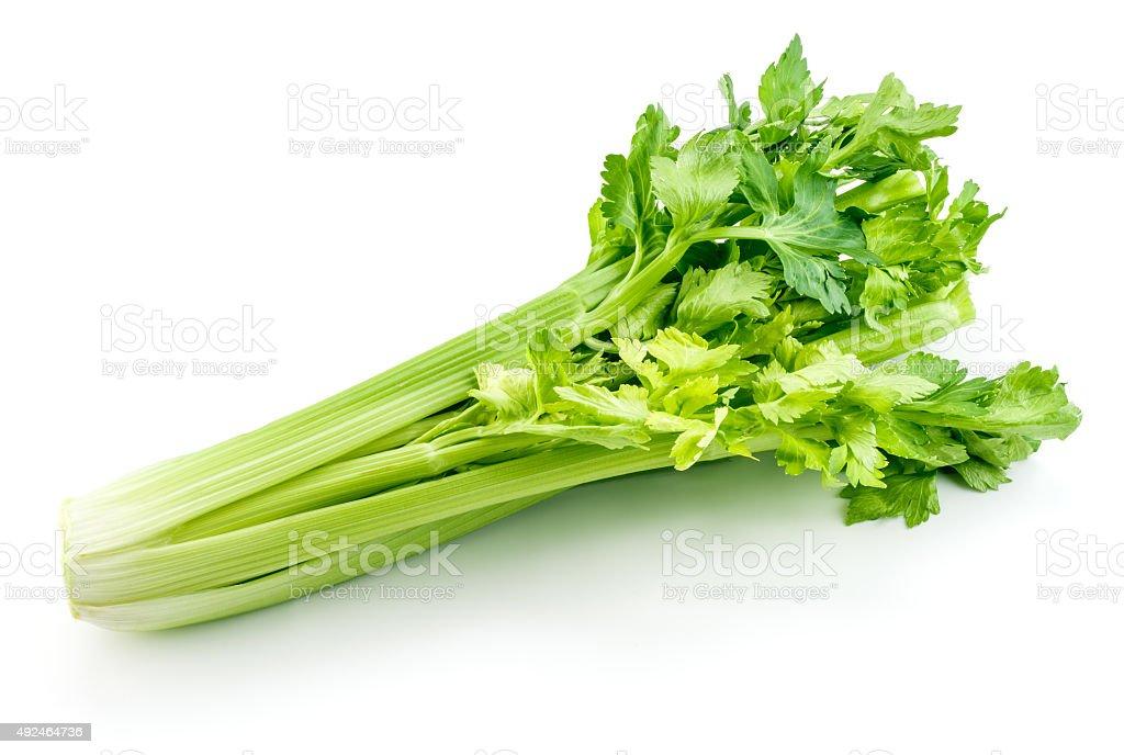 Fresh celery isolated on white background stock photo