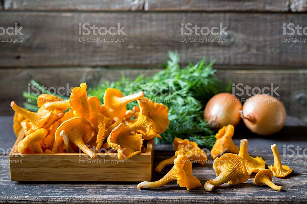 Fresh chanterelle mushrooms on rustic table stock photo