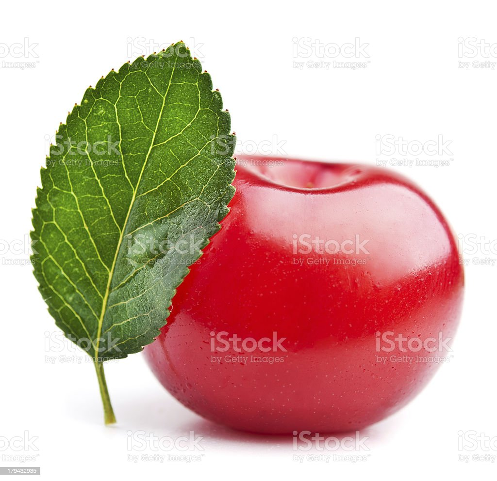 fresh cherry royalty-free stock photo