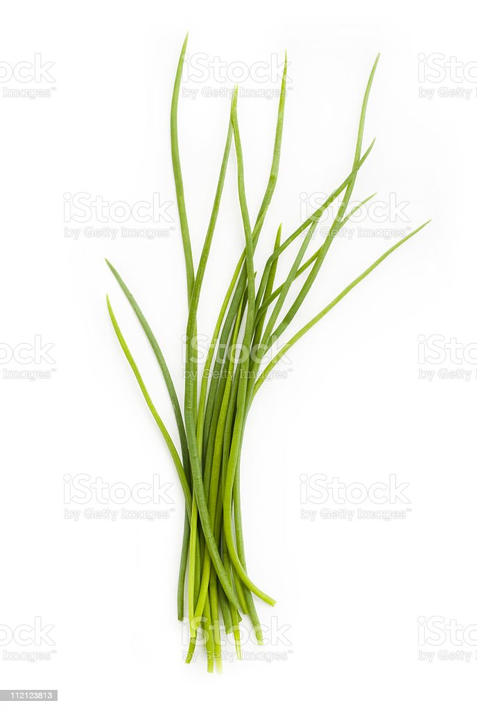 Fresh chives bunch royalty-free stock photo