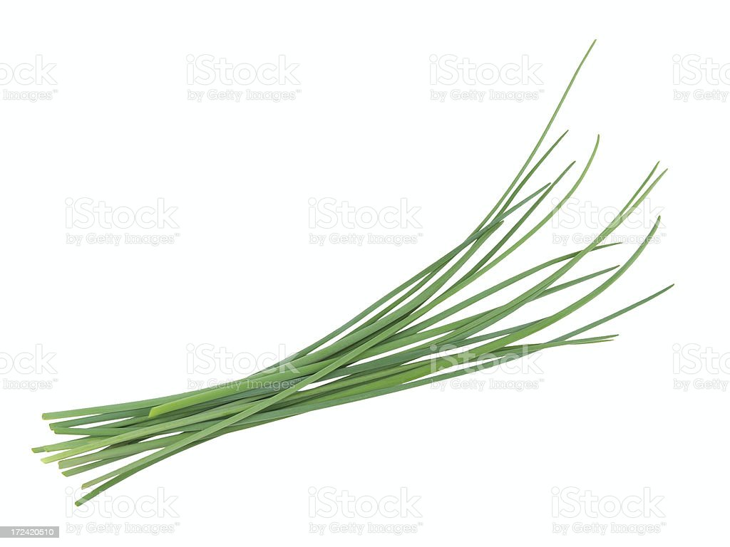 Fresh chives isolated on white background stock photo
