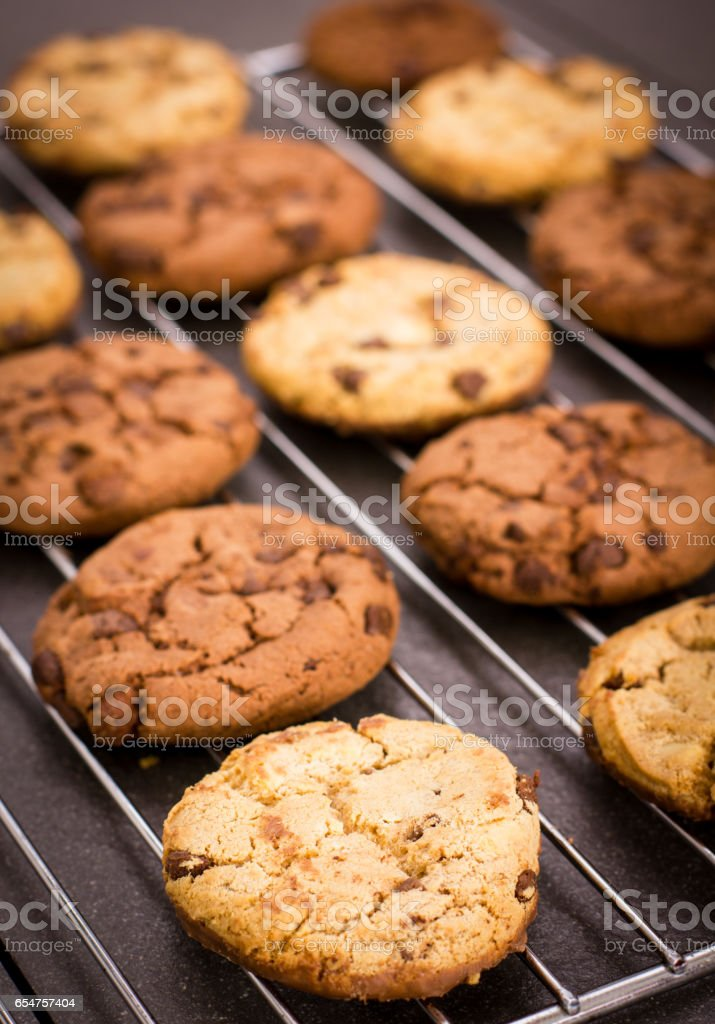 Fresh chocolate chip cookies on the cooling rack stock photo