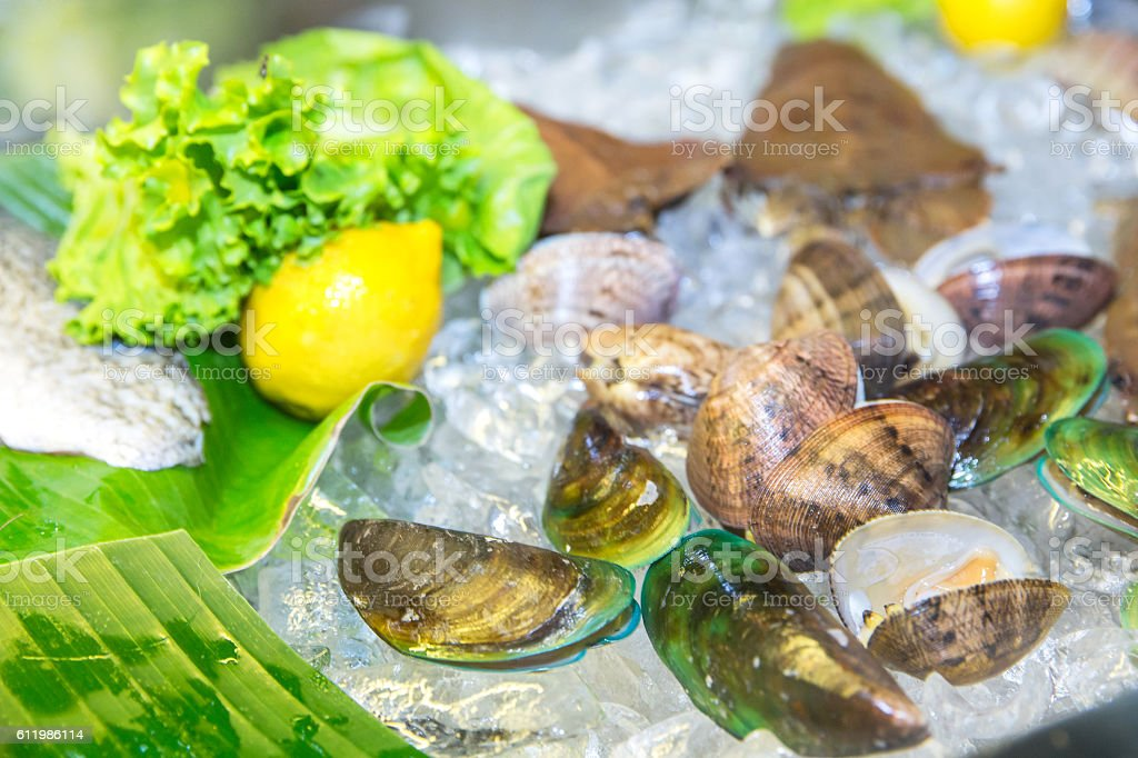 Fresh clams on ice at fish market stock photo