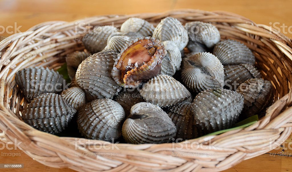 Fresh cockles in basket stock photo
