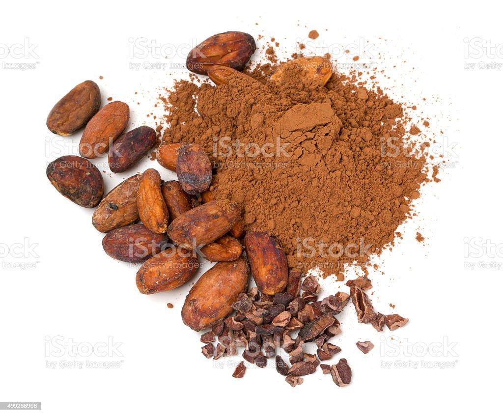 fresh cocoa isolated on white stock photo