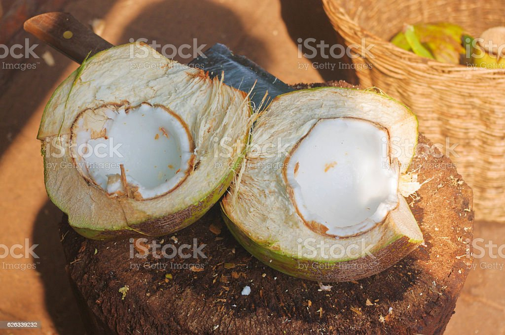 fresh coconut, halved, in its shell stock photo