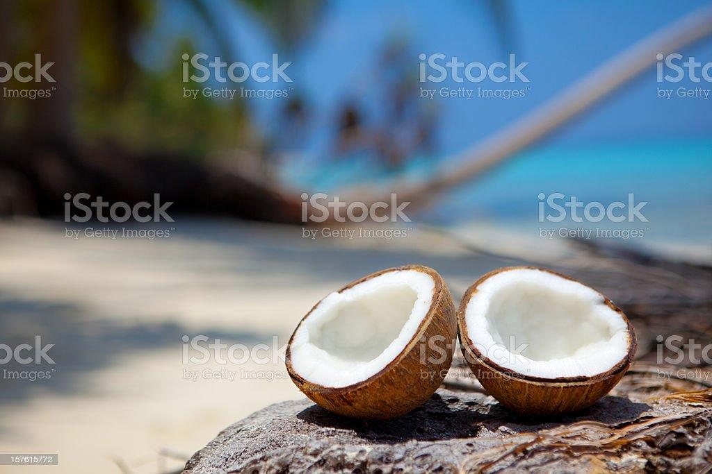 fresh coconut halves on beach stock photo