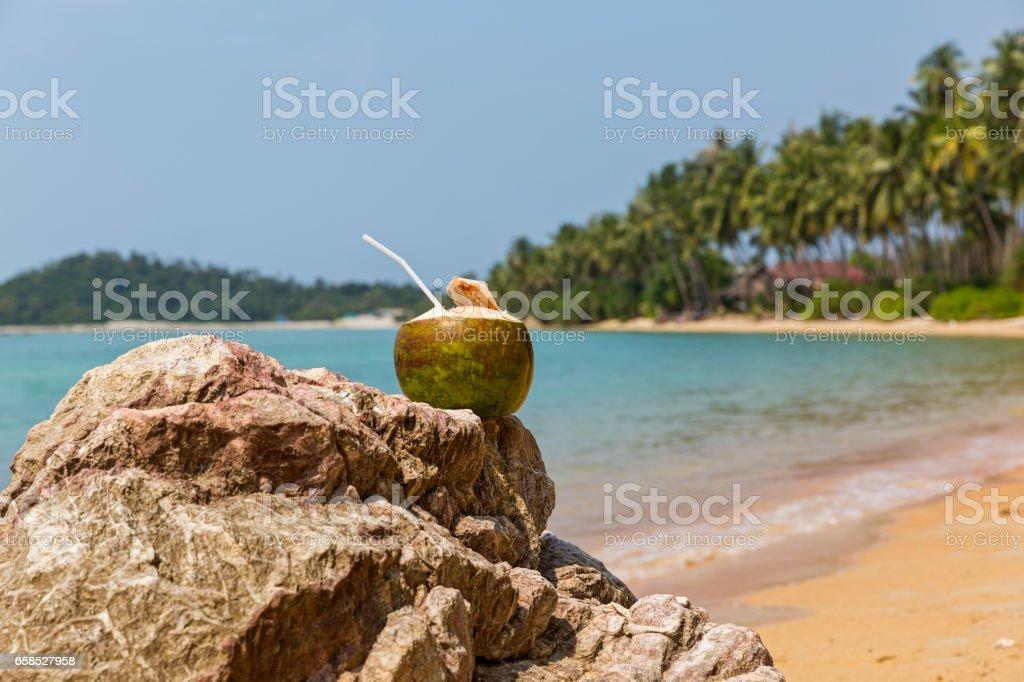 Fresh coconut juice stock photo