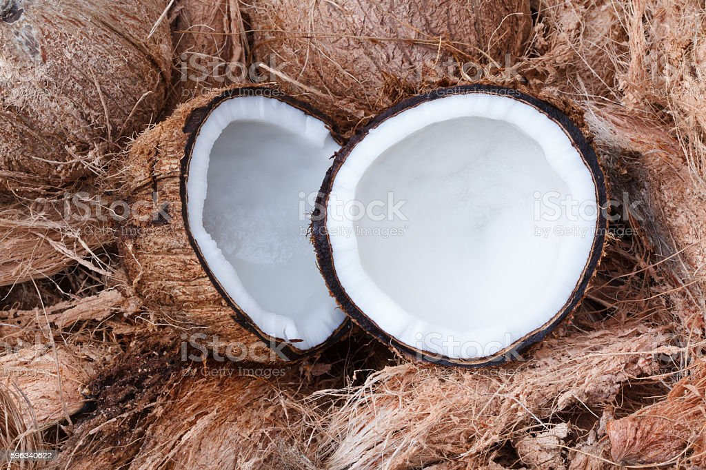 Fresh coconut on  brown  shell. stock photo