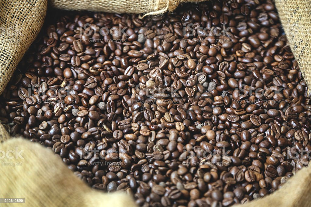 Fresh coffee beans stock photo