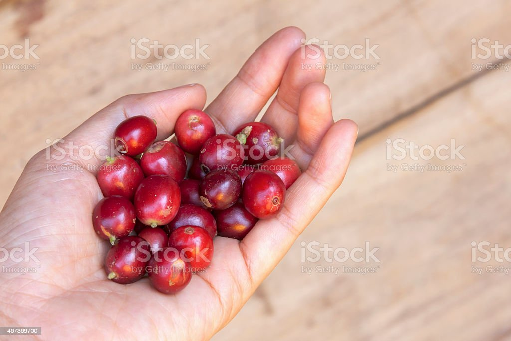 Fresh coffee beans wood background royalty-free stock photo