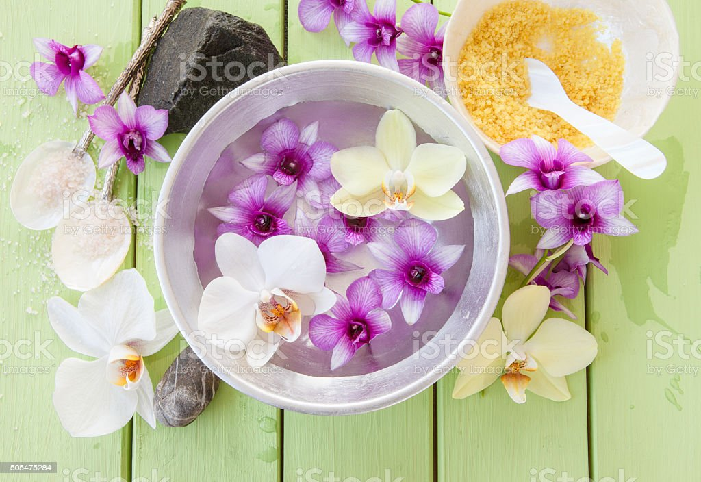 Fresh colorful orchids stock photo