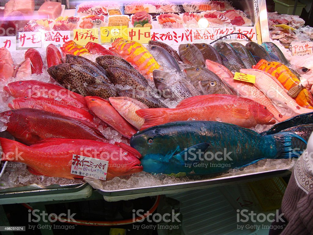Tropical fish on ice stock photo