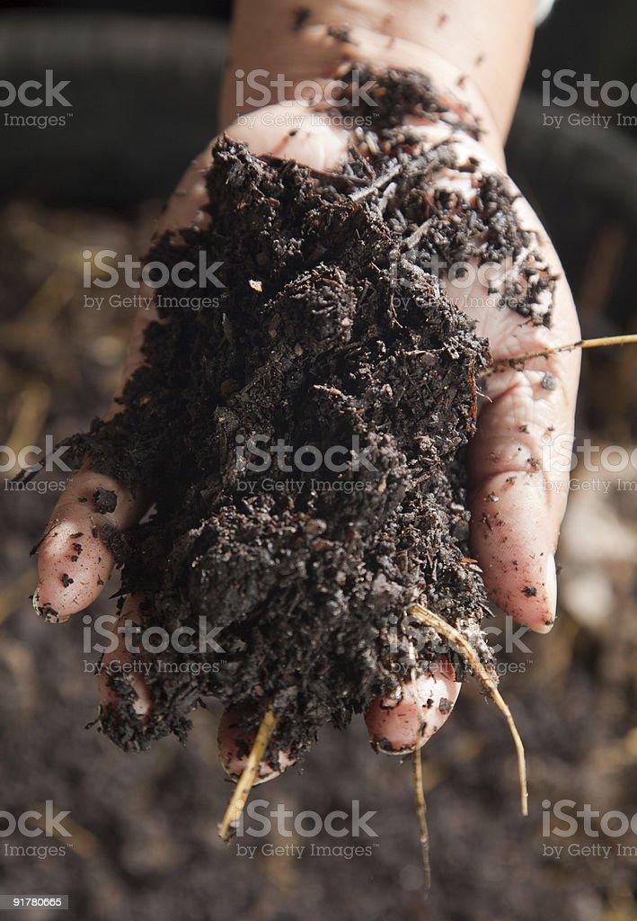 Fresh compost royalty-free stock photo