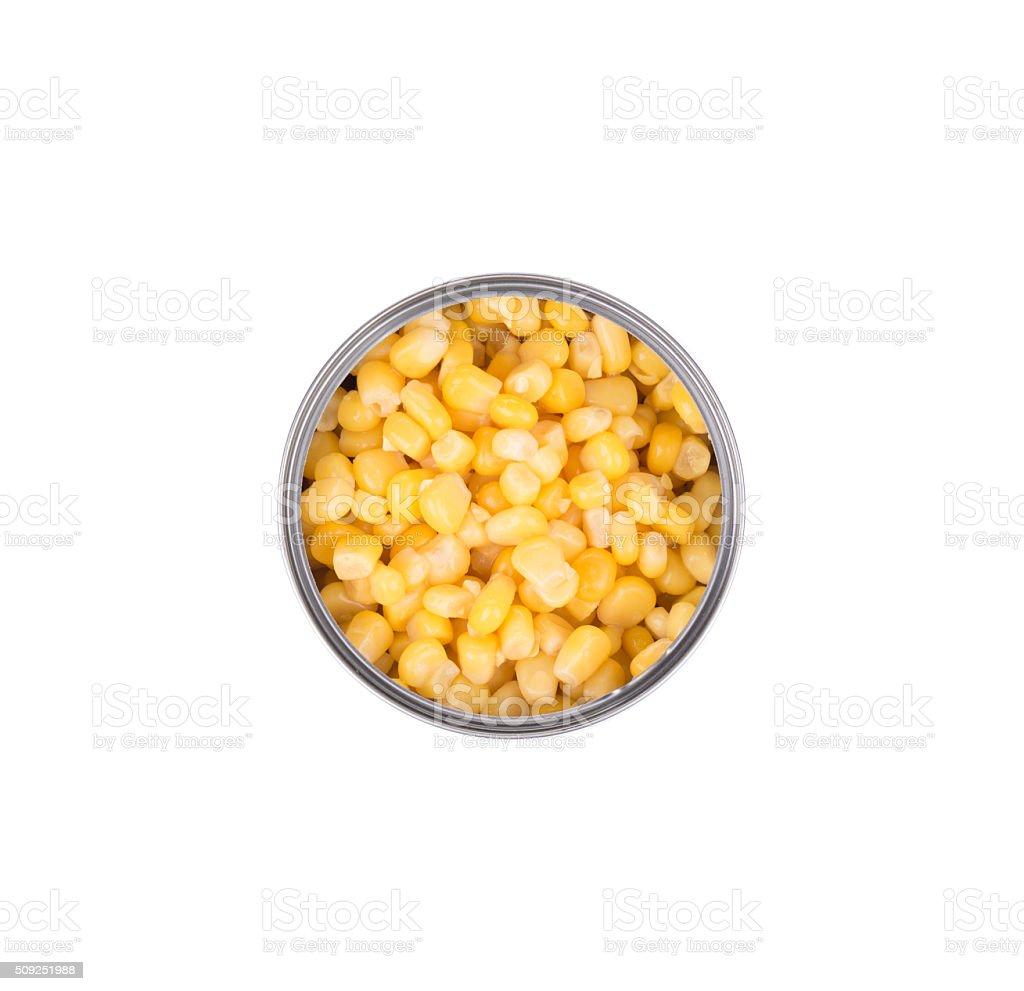 Fresh corn in can. stock photo