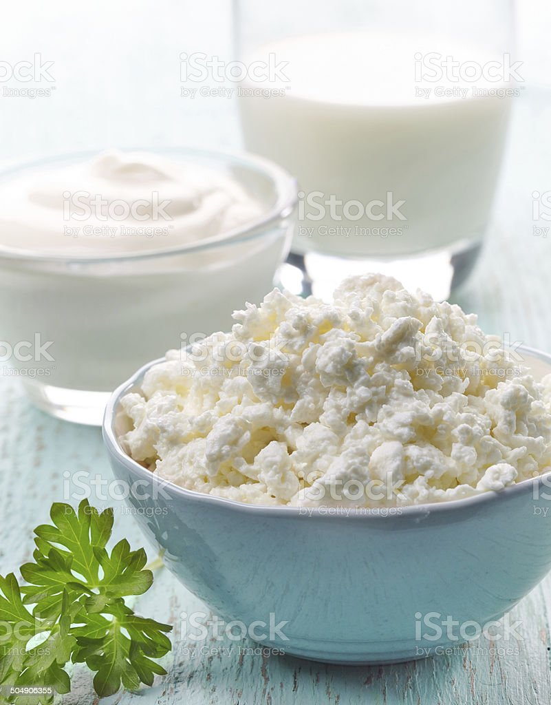fresh cottage cheese and dairy products stock photo