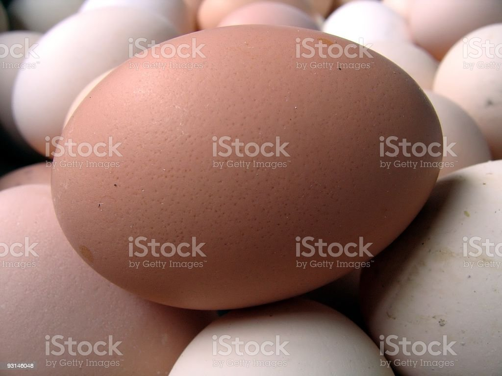 Fresh Country Egg royalty-free stock photo