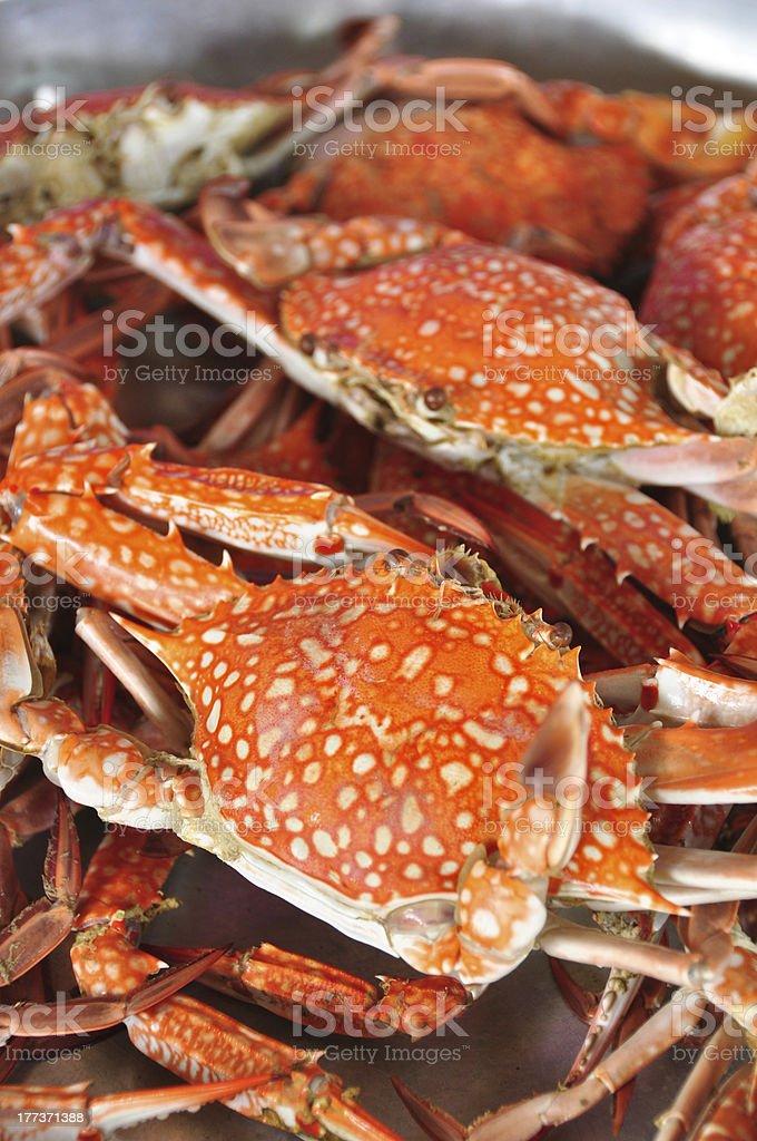 Fresh Crab background stock photo