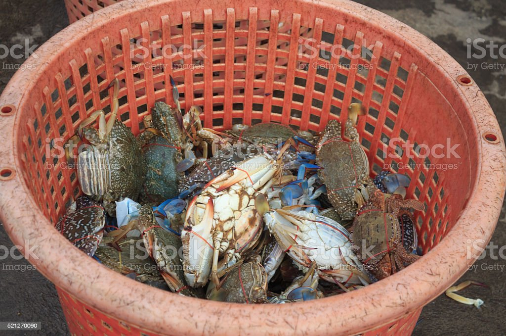 Свежий краб на рынке морепродуктов для продажи Стоковые фото Стоковая фотография