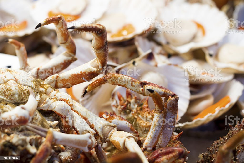 Fresh crab royalty-free stock photo