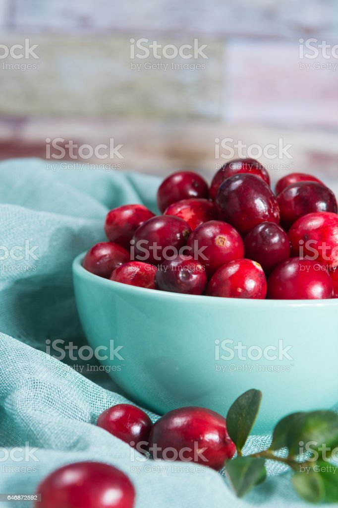Fresh cranberries in a blue bowl. Ripe berries of Vaccinium macrocarpon, also large cranberry, American cranberry or bearberry. stock photo