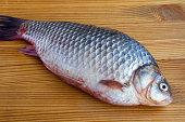 Fresh crucian fish