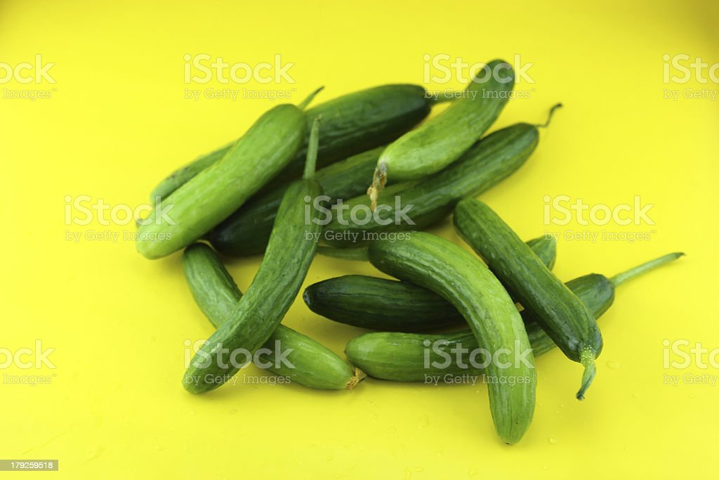 Fresh Cucumber royalty-free stock photo