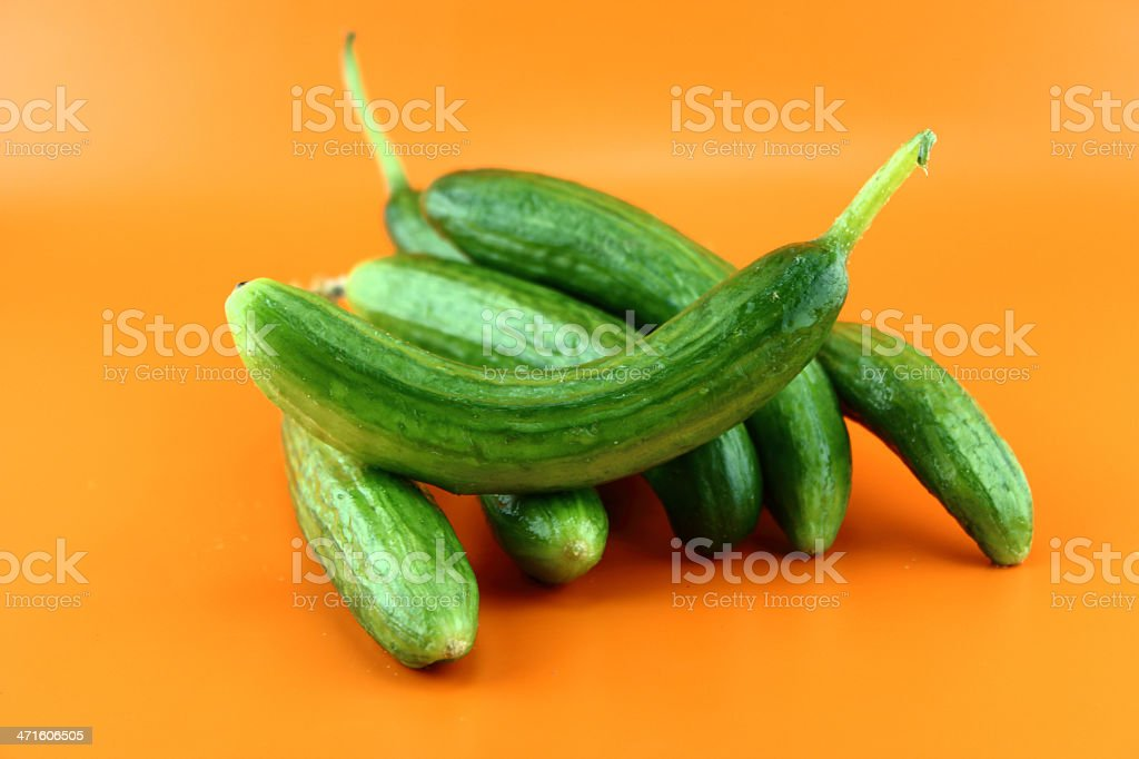 Fresh Cucumber royalty-free stock photo