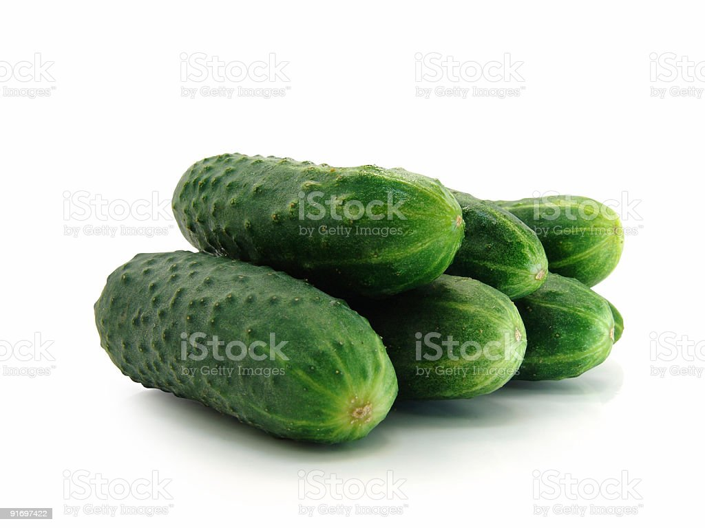 fresh cucumbers royalty-free stock photo