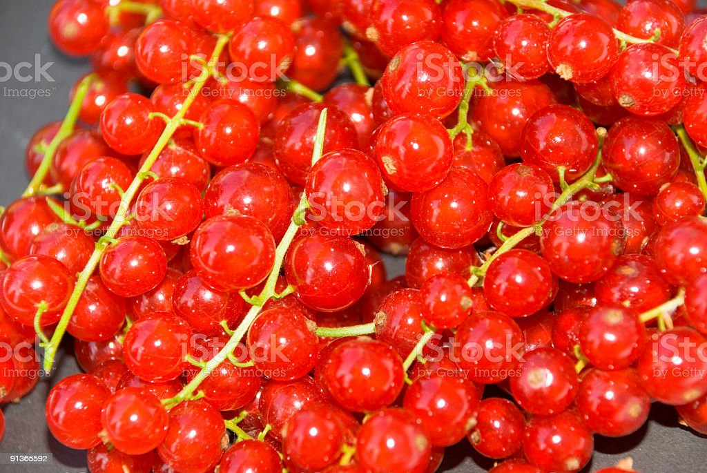 fresh Currant royalty-free stock photo