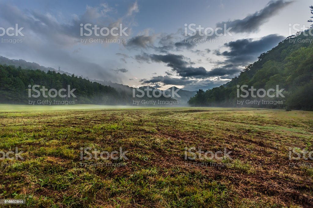 Fresh Cut Grass in Foggy Valley stock photo
