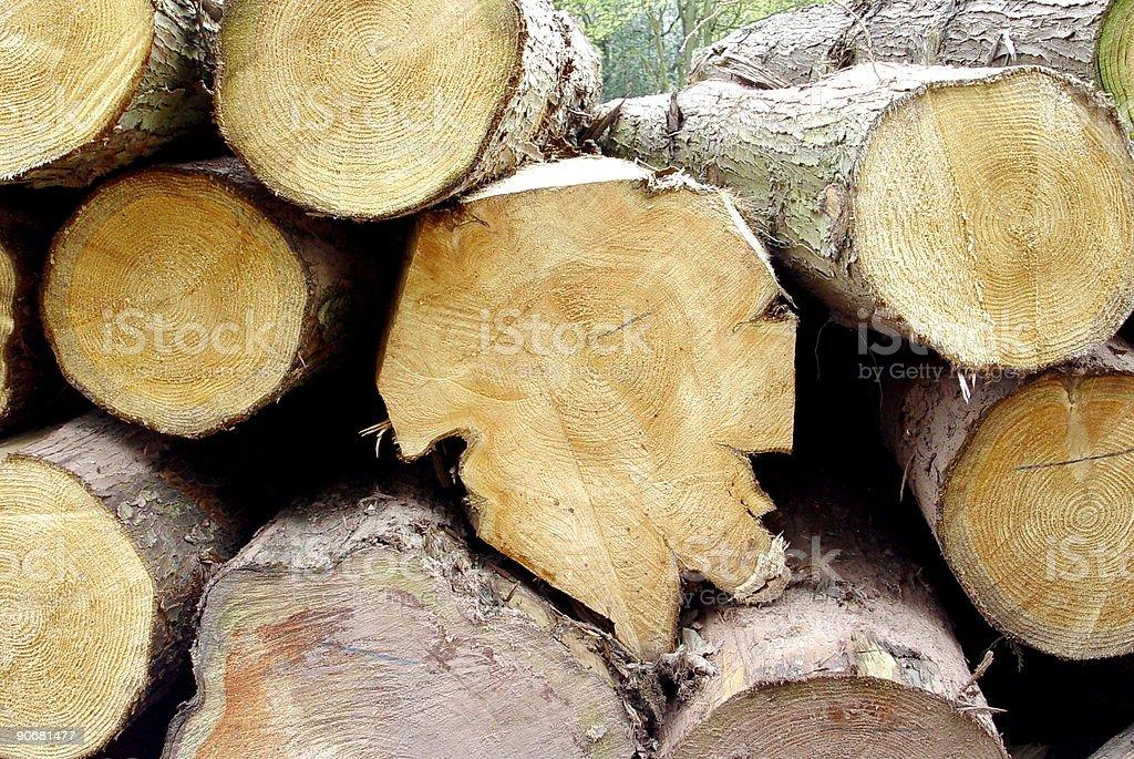 fresh cut logs royalty-free stock photo
