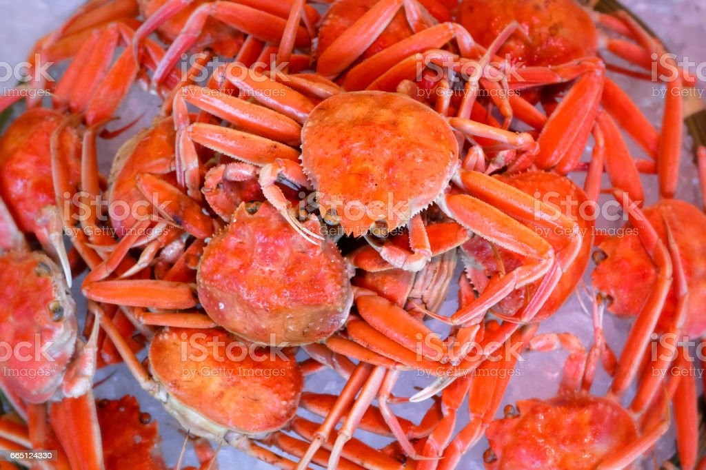 fresh delicious Japanese snow crab stock photo