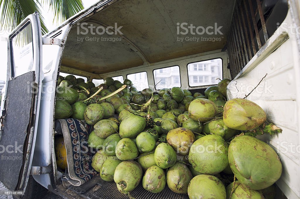 Fresh Drinking Coconuts Delivery in Back of Brazilian Van stock photo