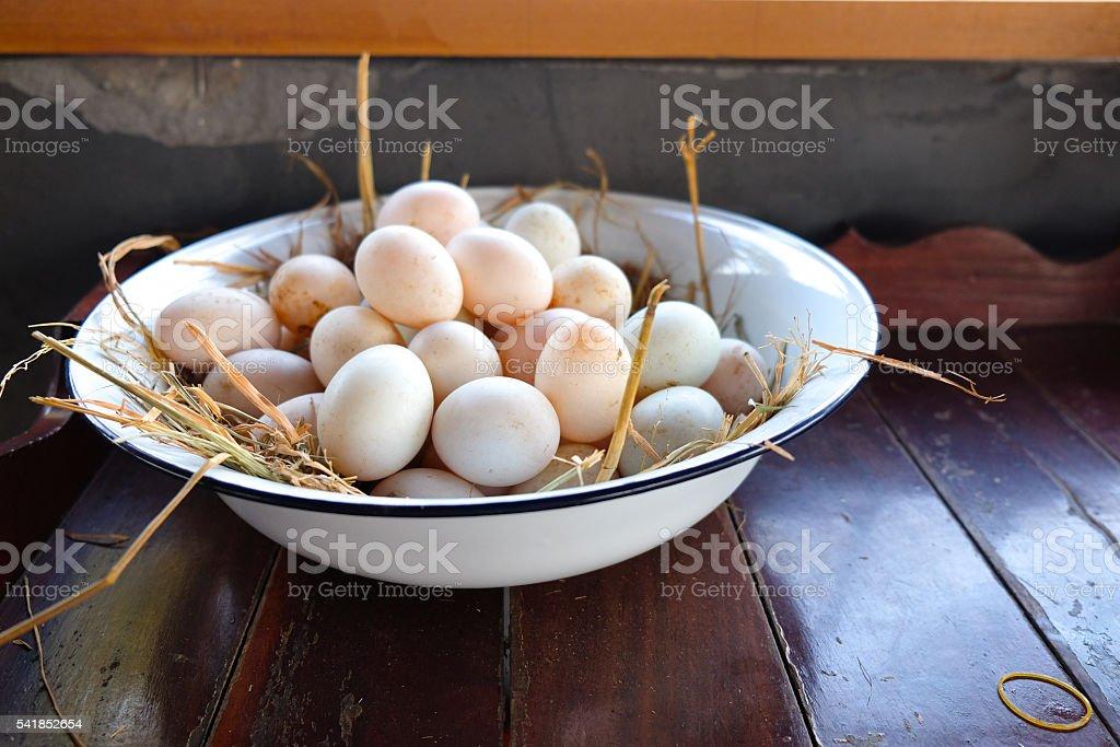 Fresh duck eggs stock photo