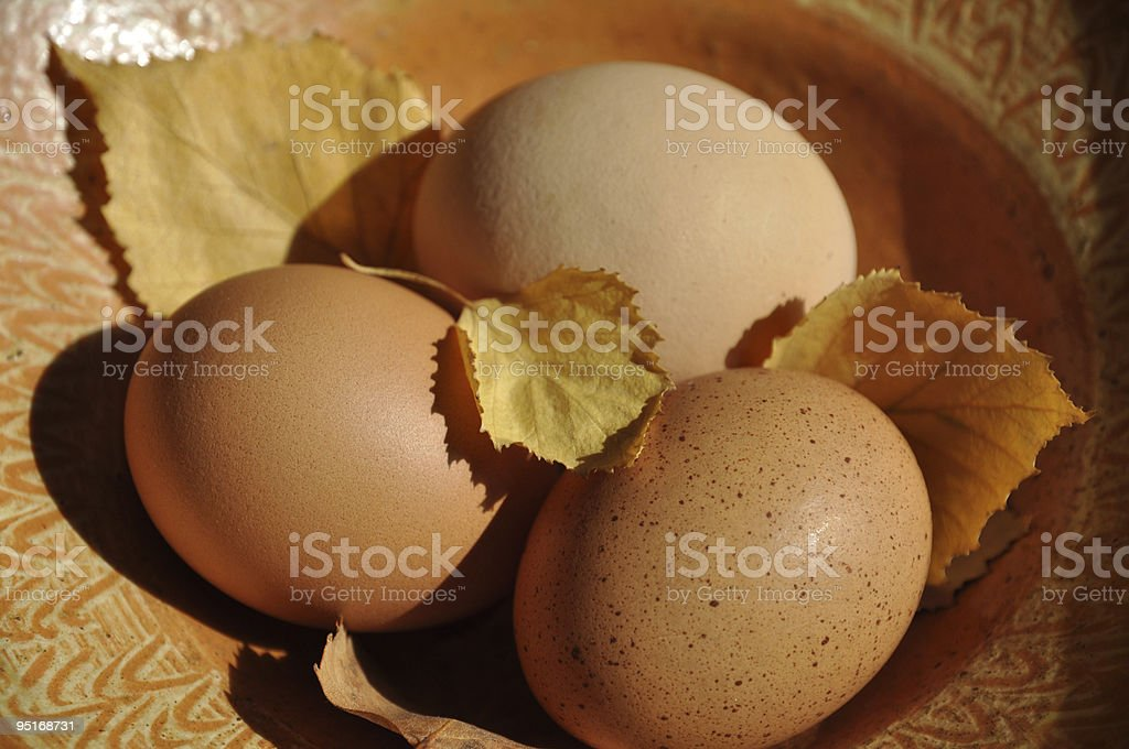 Fresh Eggs and Autumn Leaves royalty-free stock photo