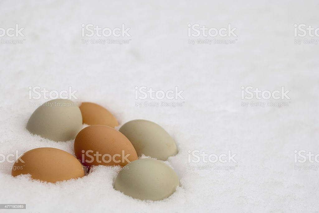 Fresh Eggs in Winter Snow stock photo