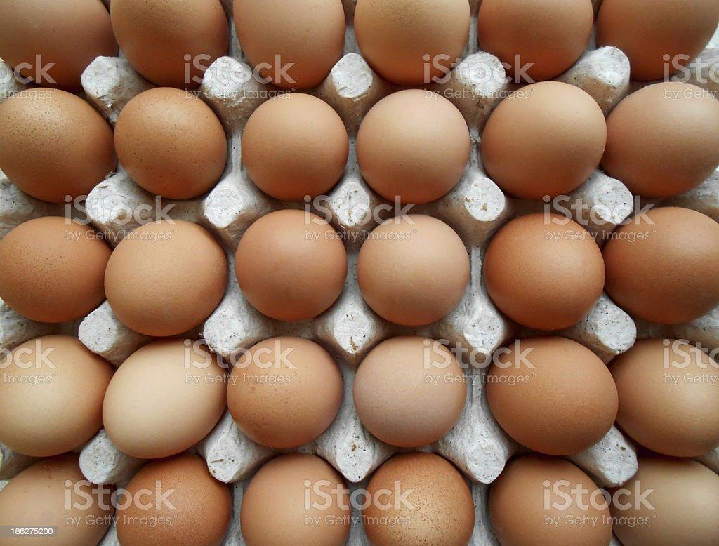 Fresh eggs stock photo