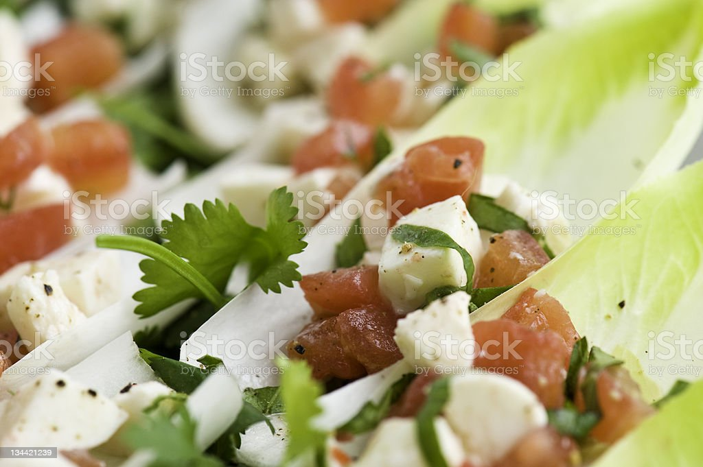 Fresh Endive with Buffalo Mozzarella and Tomato Vinaigrette royalty-free stock photo