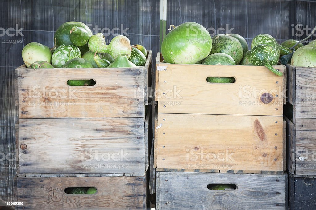 Fresh Fall Gourds and Crates in Rustic Barn Setting royalty-free stock photo
