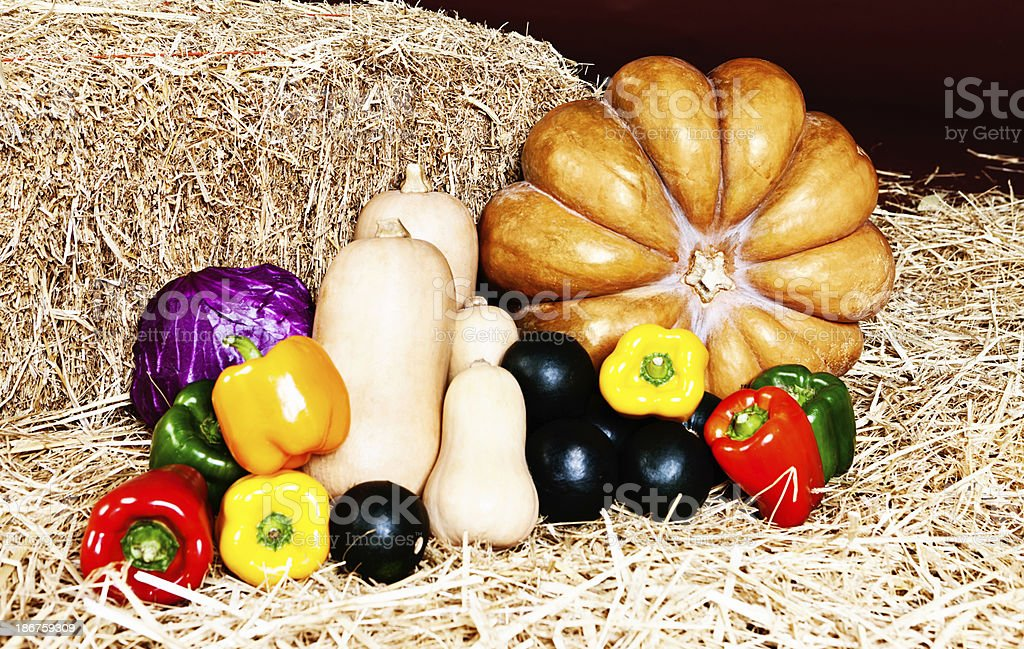 Fresh fall vegetables on strawn in farmers market royalty-free stock photo
