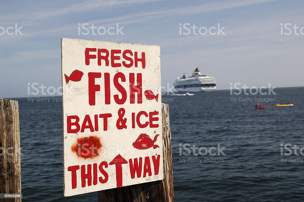 Fresh fish and bait for sale sign royalty-free stock photo