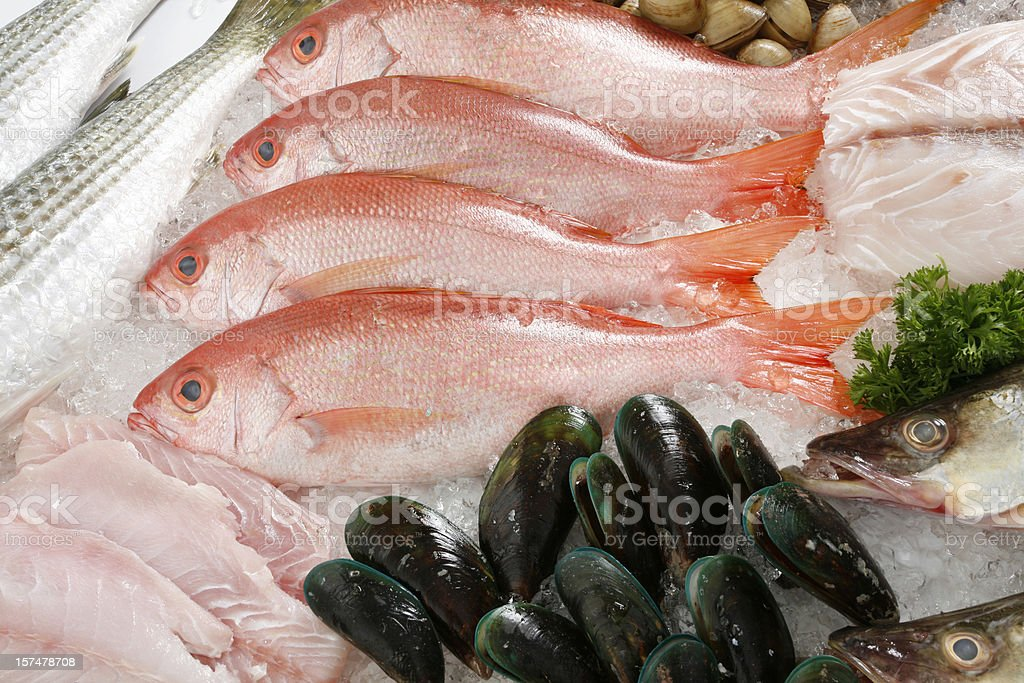 Fresh fish and mussels on bed of ice royalty-free stock photo