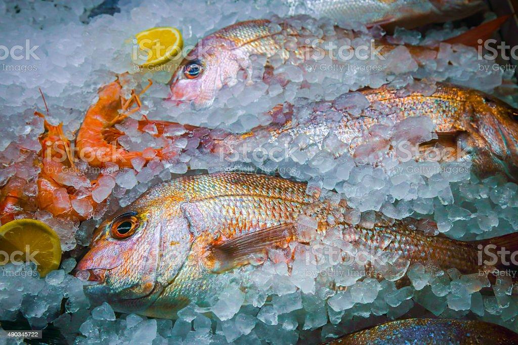 Fresh fish and sea food on ice stock photo