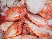 Fresh fish at the market,Thailand