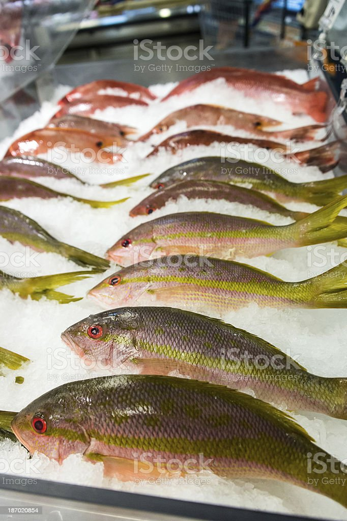 Fresh fish for sale royalty-free stock photo